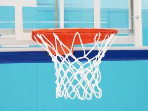Basketball net PES 6 mm